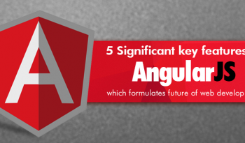 features-angularjs
